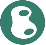 The Basalt Group Logo